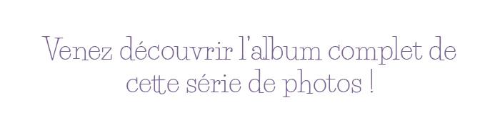 Voir l'album photo du Louvre